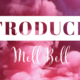 Introducing Mell Bell